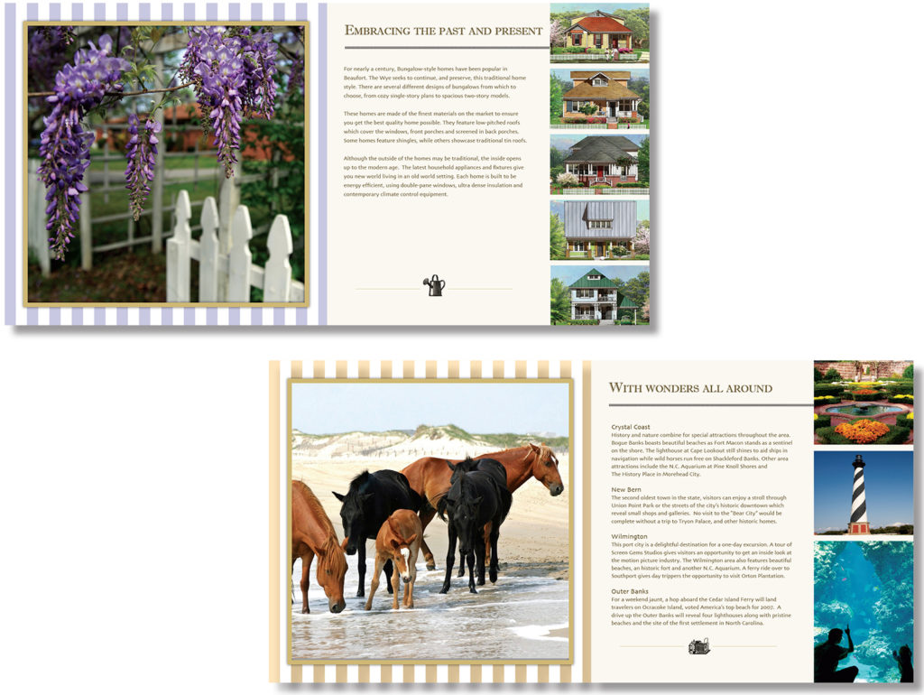 Wye Brochure